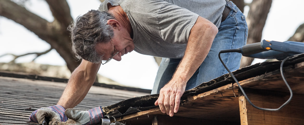 Roof Repair by Livingston Roof Pros