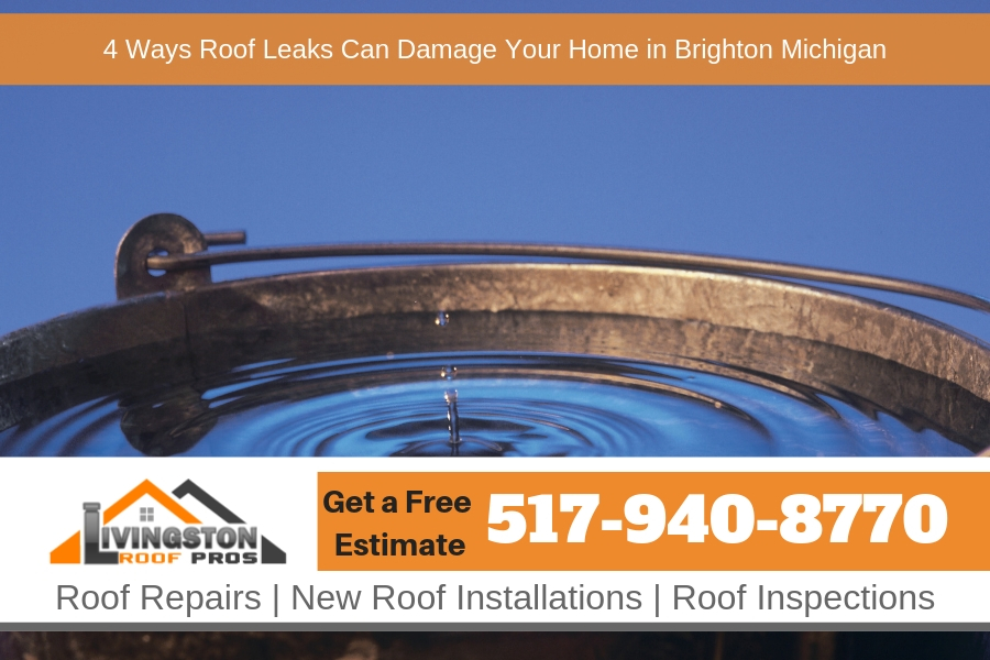 4 Ways Roof Leaks Can Damage Your Home in Brighton Michigan