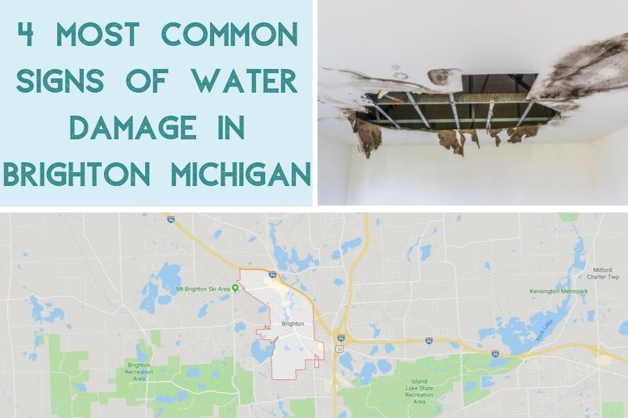 4 Most Common Signs of Water Damage in Brighton Michigan